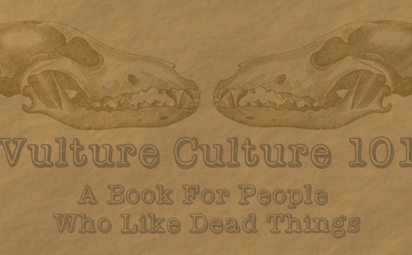 Coming Soon: The Vulture Culture 101 IndieGoGo Campaign!